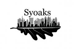 syoaks_concept1